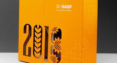 Корпоративная коробка BASF 01